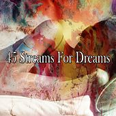 45 Streams for Dreams by Spa Relaxation