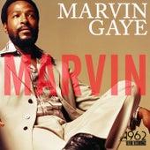 Marvin de Marvin Gaye