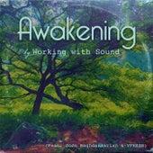 Awakening (feat. Jojo Baghdassarian & Vfresh) by Wor'king