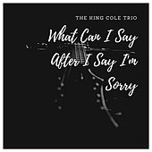 What Can I Say After I Say I'm Sorry von Nat King Cole