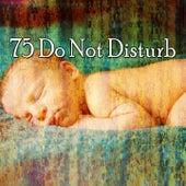 75 Do Not Disturb de Smart Baby Lullaby