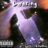 Leaking von LilNhoj