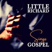 Little Richard Sings Gospel by Little Richard