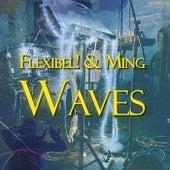 Waves von Flex-Ibel