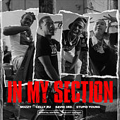 In My Section (feat. Saviii 3rd & $tupid Young) von Mozzy