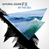 Natural Sound FX: By The Sea by Natural Sounds