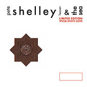 Heaven And The Sea by Pete Shelley
