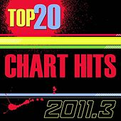 Top 20 Chart Hits USA_2011.2 by The CDM Chartbreakers