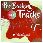 Pro Backing Tracks T, Vol.13 by Pop Music Workshop