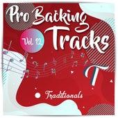 Pro Backing Tracks T, Vol.12 by Pop Music Workshop