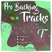 Pro Backing Tracks T, Vol.14 by Pop Music Workshop