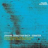 J.S. Bach: Violin Sonatas de Plamena Nikitassova