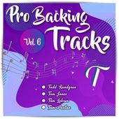Pro Backing Tracks T, Vol.6 by Pop Music Workshop
