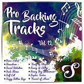 Pro Backing Tracks S, Vol.12 by Pop Music Workshop