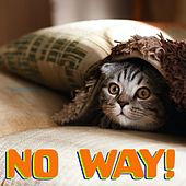 No Way! by Cat Music