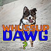 Whussup Dawg? by Dog Music (1)