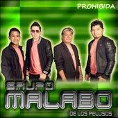 Prohibida de Grupo Malabo De Los Pelusos