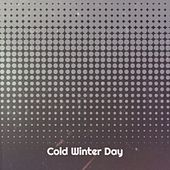 Cold Winter Day by Smiley Lewis, Slim Harpo, Barry White, Baby Washington, Blind Willie McTell, Lightnin' Hopkins, Willie Dixon