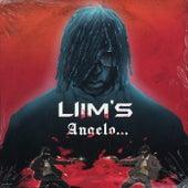 Angelo... de Liim's