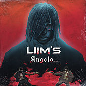 Angelo... by Liim's