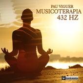 Musicoterapia de Pau Viguer