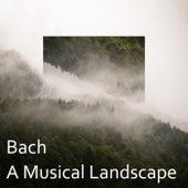 Bach: A Musical Landscape von Johann Sebastian Bach