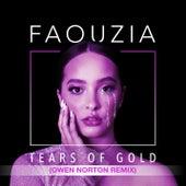 Tears of Gold (Owen Norton Remix) von Faouzia