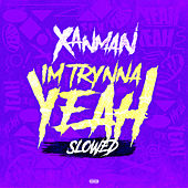 I'm Trynna Yeah (slowed) by Xanman