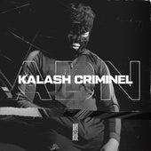 ADN (Extrait du projet Art de rue) von Kalash Criminel