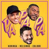 Pa Pa Pa de DJ Nelsinho Mc Koringa