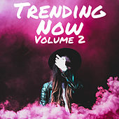Trending Now Volume 2 de Various Artists