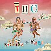 THC by Joey Montana