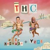 THC de Joey Montana