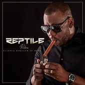 Estátua Ninguém Se Mexe by Reptile Pirline