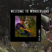 Welcome To Wonderland von Colin Liams