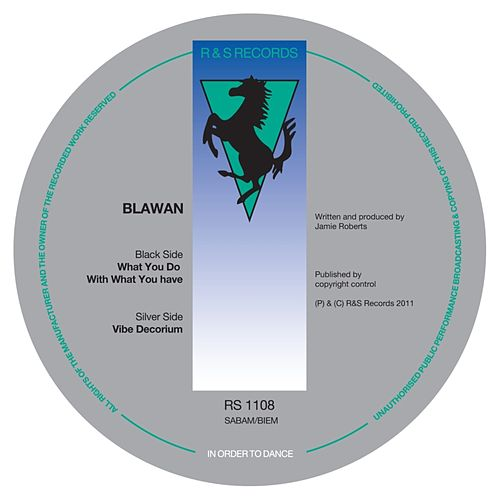 What You Do With What You Have by Blawan