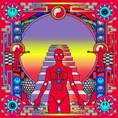 Lucky (LO'99 / PS1 Remixes) de PNAU