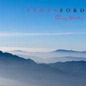 Stormy Weather von James Ford
