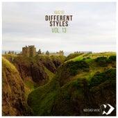 Different Styles Vol.13 de Various Artists