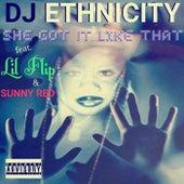 She Got It Like That by DJ Ethnicity
