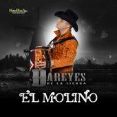 El Molino by Dareyes De La Sierra