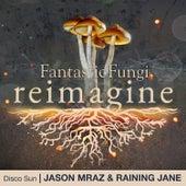 Disco Sun (Fantastic Fungi: Reimagine) von Jason Mraz