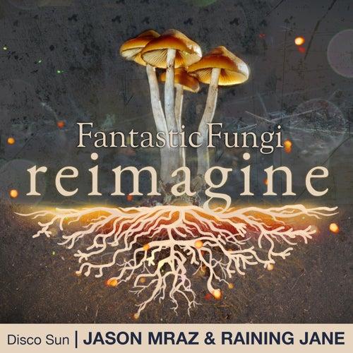 Disco Sun (Fantastic Fungi: Reimagine) de Jason Mraz