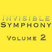 Invisible Symphony 2 von Rupert Withers