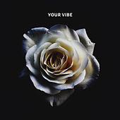 Your Vibe by Paul
