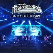 Back Stage En Vivo, Vol. 1 de Conjunto Primavera