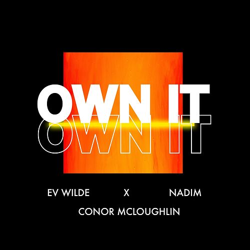 Own It de Ev Wilde