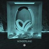 Wonderland (8D Audio) by 8D Tunes