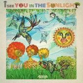 I See You in the Sunlight von Arema Arega
