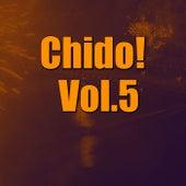 Chido! Vol.5 von Various Artists